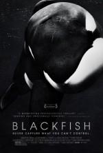 Blackfish poster I