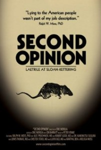 Second opinion film poster